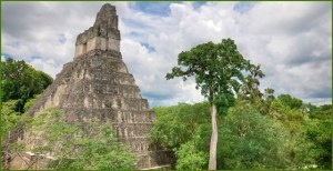 Photo: Tikal, Guatemala/Crow Canyon Archaeological Center