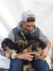 Gus Kenworthy and Puppies of Sochi, image: Twitter @guskenworthy